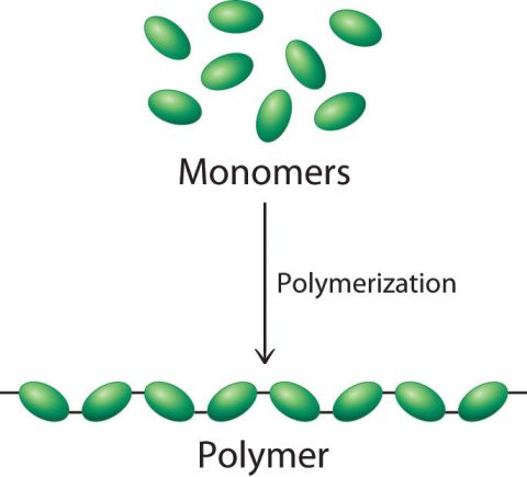 Facts that Matter - Synthetic Fibres and Plastics Class 8 Notes   EduRev