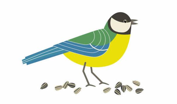Summary - वह चिड़ियाँ जो Class 6 Notes   EduRev