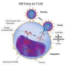 NCERT Solutions - Human Health and Diseases NEET Notes | EduRev