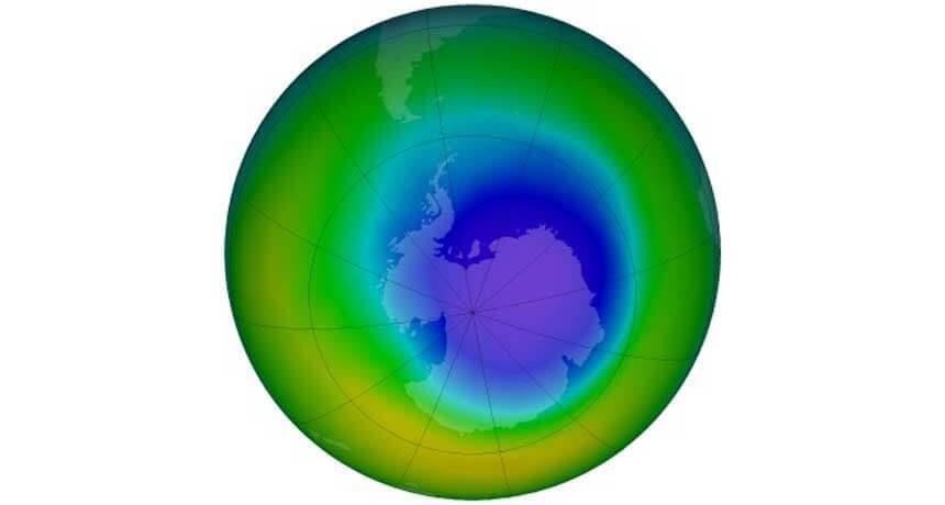 NCERT Solutions- Environmental Issues NEET Notes   EduRev