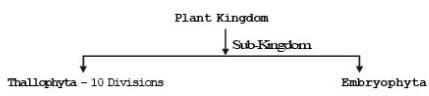 Taxonomy NEET Notes | EduRev