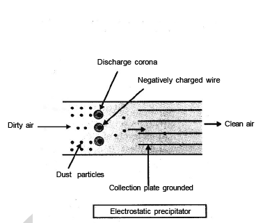 Pollution (Part - 2) - Notes, Botany, Class 12 Class 12 Notes | EduRev