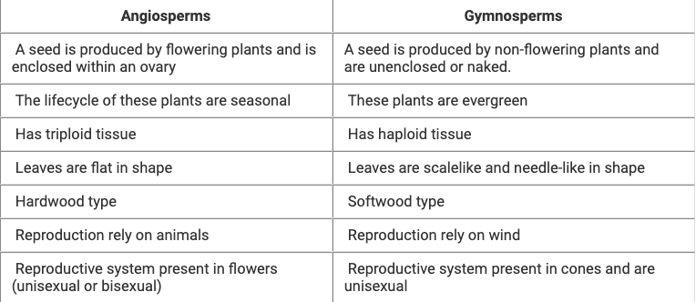 Chart Families of Angiosperms NEET Notes | EduRev