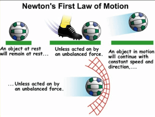 Force and Laws of Motion Class 9 Notes   EduRev