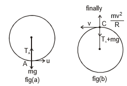 Doc: Work Energy Theorem Class 11 Notes | EduRev
