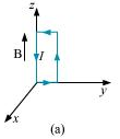 NCERT Solutions - Moving Charges And Magnetism Class 12 Notes | EduRev