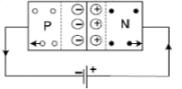 Forward and Reverse Biasing Class 12 Notes   EduRev
