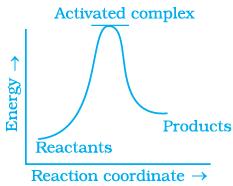 NCERT Exemplar - Chemical Kinetics NEET Notes | EduRev