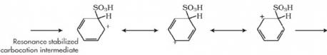 Nitration, Sulphonation and Halogenation Class 11 Notes | EduRev