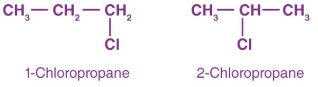 Isomerism in Alkanes, Alkenes, & Alkynes Class 11 Notes | EduRev
