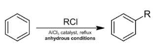 Friedel Crafts Alkylation and Acylation Class 11 Notes | EduRev
