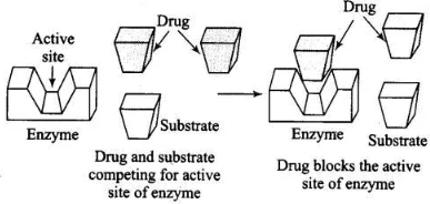 NCERT Exemplar: Chemistry in Everyday Life Notes | EduRev
