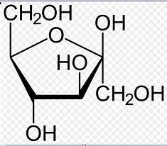 Cyclic structure of Fructose Class 12 Notes | EduRev