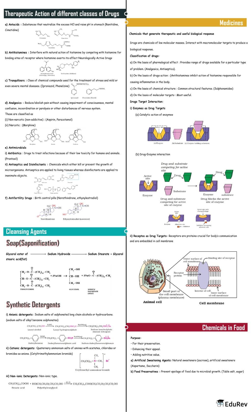 Mindmap: Chemistry in Everyday Life Notes   EduRev