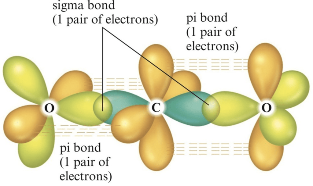 Doc: Valence Bond Theory Class 12 Notes | EduRev