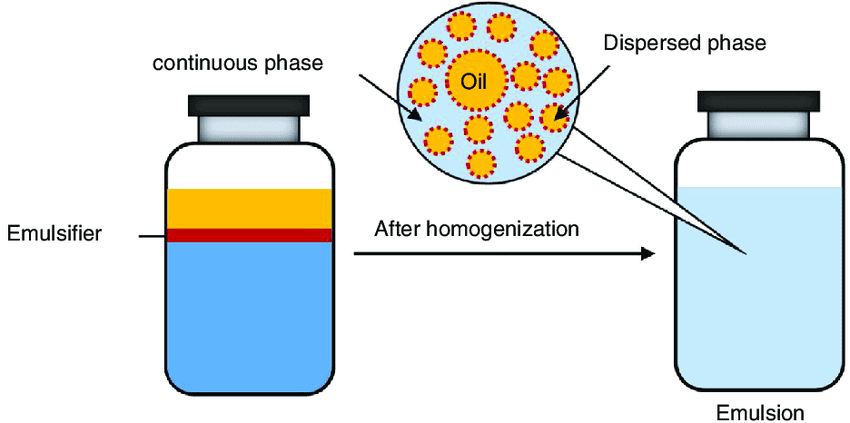 Emulsions and Colloids around Us Class 12 Notes | EduRev