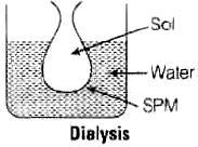 NCERT Exemplar - Surface Chemistry JEE Notes | EduRev