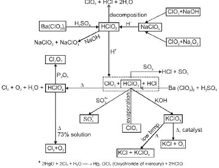 Chapter - 10 p-Block Elements & Their Compounds Notes | EduRev