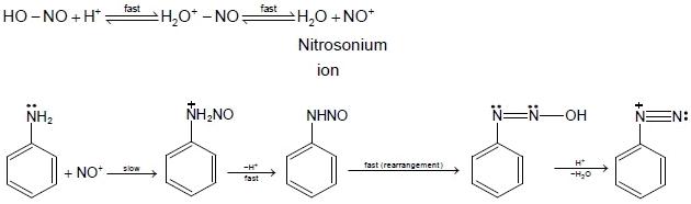 Diazonium Salt and Diazotisation Class 12 Notes | EduRev