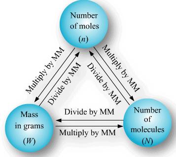 Mole Concept and Basic Concepts Class 11 Notes | EduRev