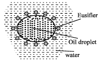 Emulsions and their Properties Class 12 Notes | EduRev