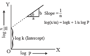 Doc: Adsorption Isotherms Class 12 Notes | EduRev