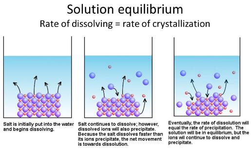 Solubility - Solutions Class 12 Notes | EduRev