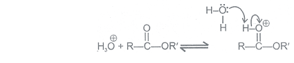 Physical and Chemical Properties of Aldehydes and Ketones Class 12 Notes | EduRev
