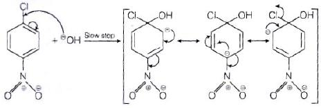 NCERT Exemplar: Haloalkanes and Haloarenes Notes | EduRev