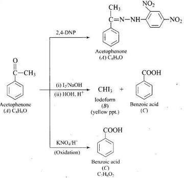 NCERT Exemplar: Aldehydes, Ketones and Carboxylic Acids Notes | EduRev