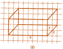NCERT Solutions(Part - 1) - Visualising Solid Shapes Class 7 Notes | EduRev