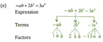 NCERT Solutions(Part - 1) - Algebraic Expressions Class 7 Notes | EduRev