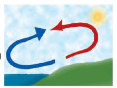 NCERT Exemplar Solutions: Winds, Storms & Cyclones Class 7 Notes | EduRev