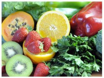 Worksheet Questions - Components of Food Class 6 Notes   EduRev