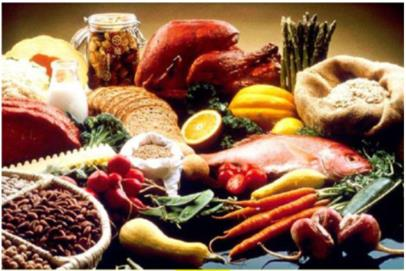 NCERT Solution - Components of Food Class 6 Notes | EduRev