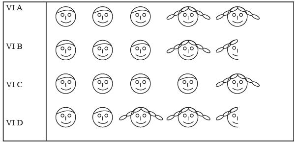 Worksheet Question - Data Handling Class 6 Notes | EduRev