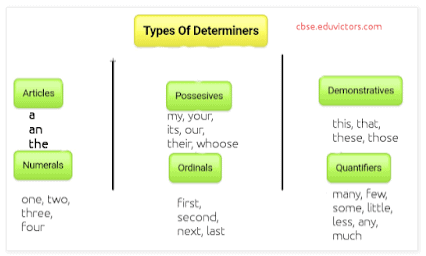 Rules for Determiners - Determiners Class 10 Notes | EduRev