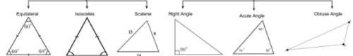 Theory - To Show that the Area of a Triangle is half the product of the Base and the Height, Math Class 9 Notes | EduRev