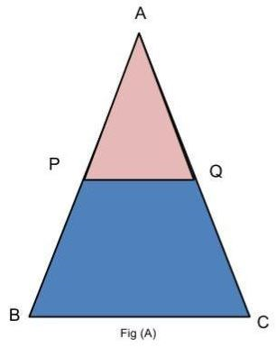 Procedure - To verify the mid-point theorem for a triangle, Math, Class 9 Class 9 Notes | EduRev