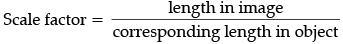 Sample Question Paper (2020-21) (Standard) - 1 Notes | EduRev