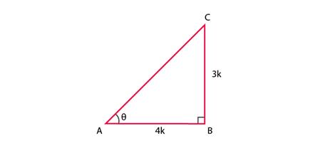 NCERT Exemplar - Introduction to Trigonometry Class 10 Notes | EduRev