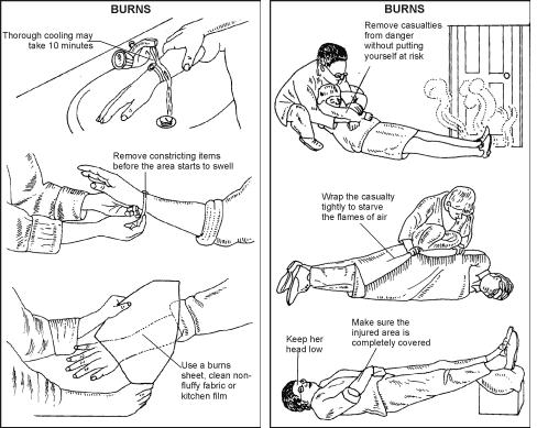 Chapter Notes- Survival Skills Class 10 Notes | EduRev