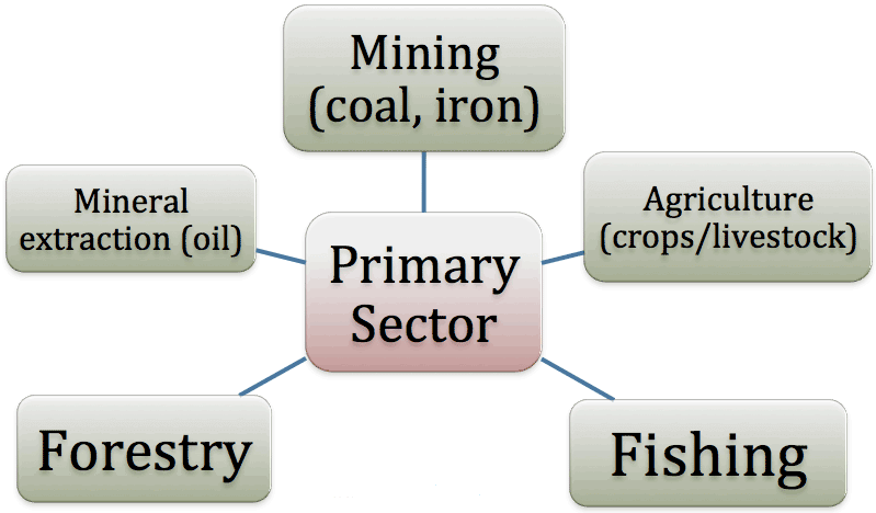 Key Concepts: Chapter 2 – Sectors Of The Indian Economy, Class 10, SST | EduRev Notes