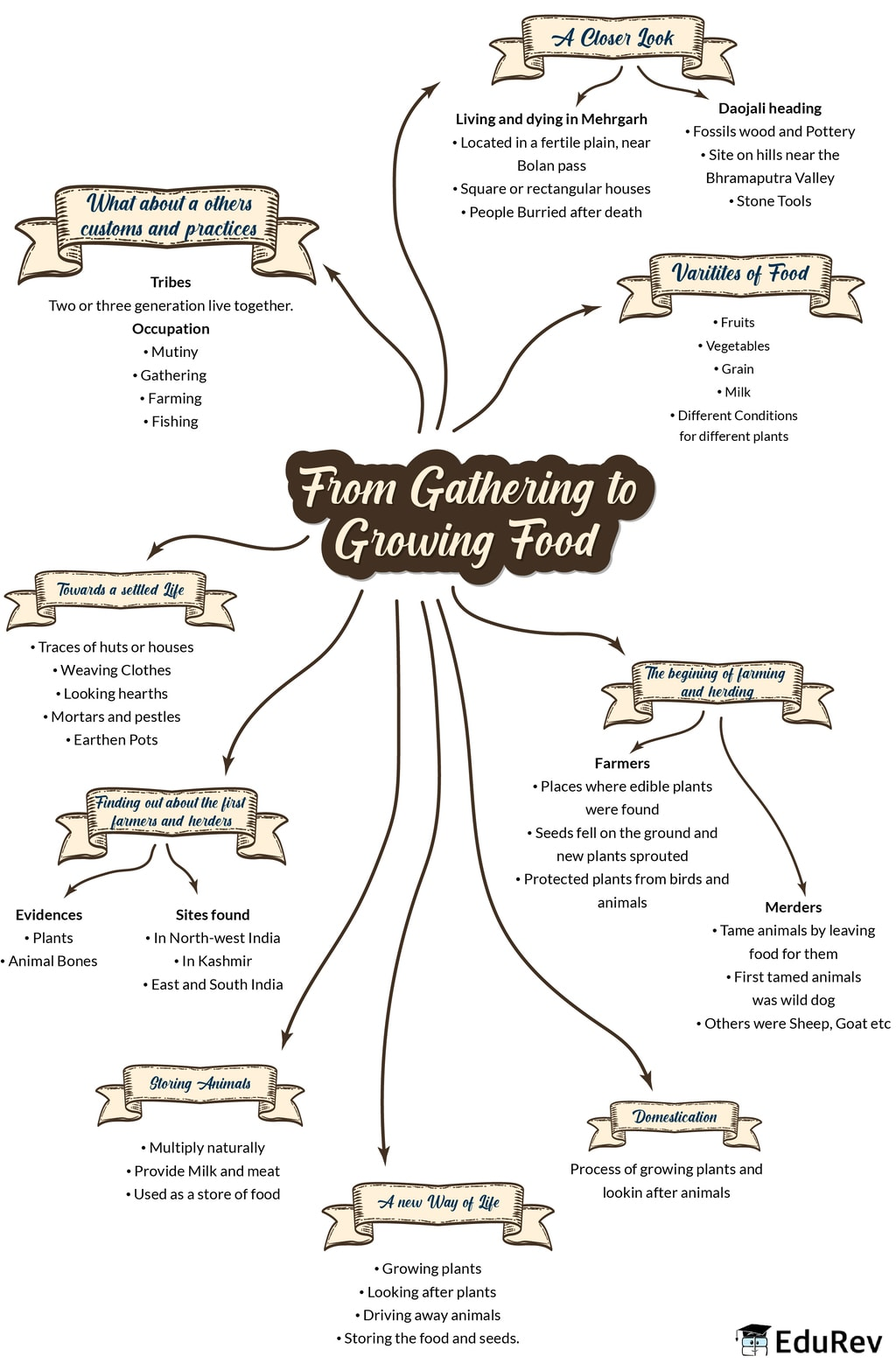 Mindmap: From gathering to Growing Food Notes | EduRev