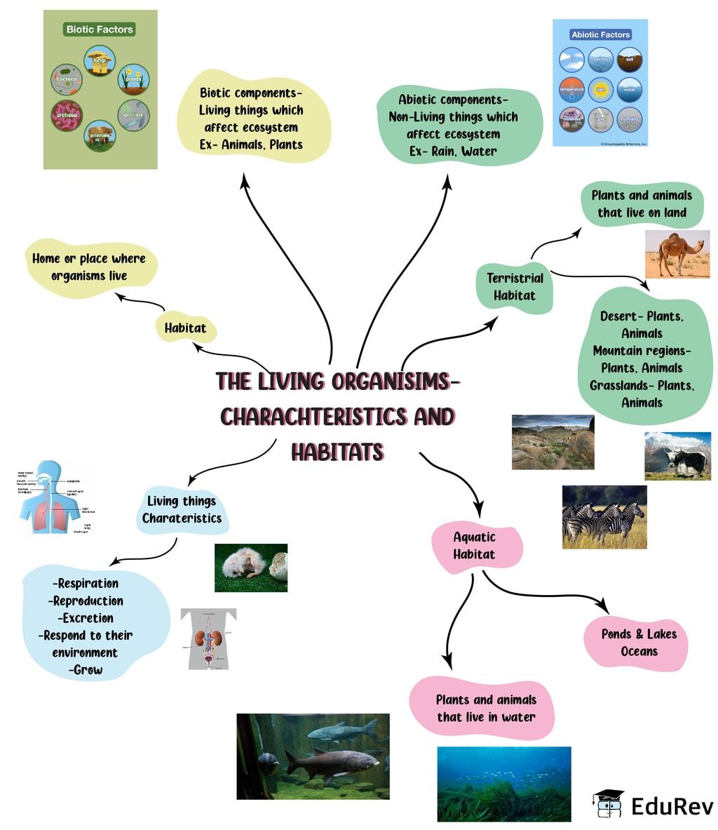 Mindmap: The Living Organisms And Their Surroundings Notes   EduRev