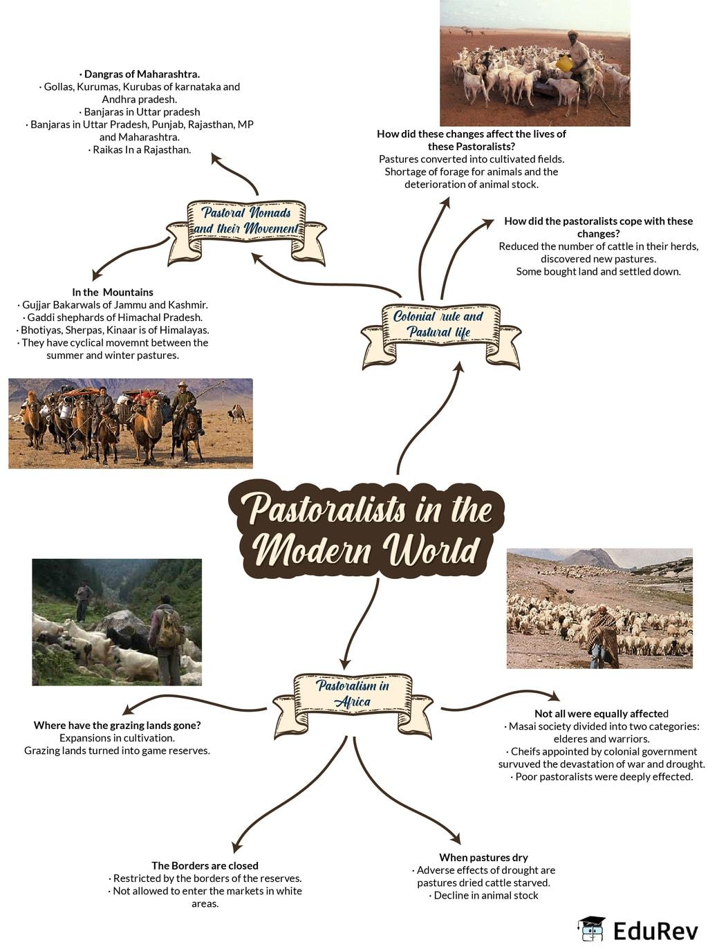 Mindmap: Pastoralists in the modern world Notes | EduRev