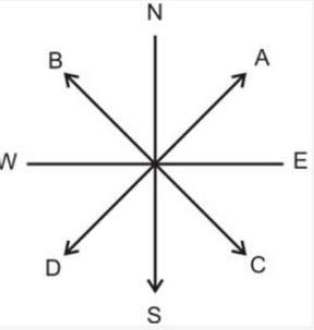 Very Short Question Answers - Maps Class 6 Notes | EduRev