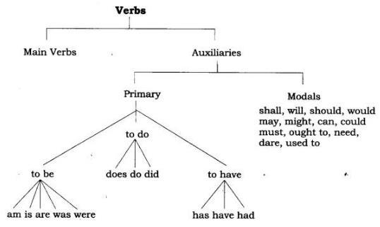 Worksheet - Verb Notes | EduRev