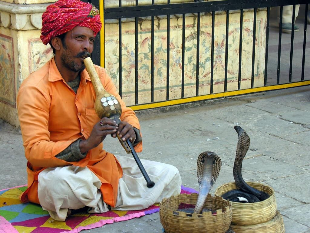 NCERT Solution - Chapter 2: A SNAKE CHARMER'S STORY, Class 5