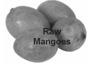 Worksheet - Mangoes Round the Year Class 5 Notes   EduRev